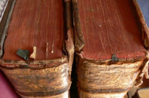 Article : Petit lexique ivoirien